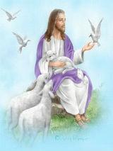 capa cartas jesus imagem